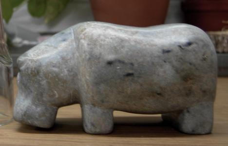 [Hippo]